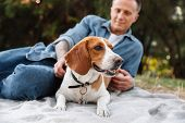 Photo of masculine young man in denim clothes sitting on blanket in park with his canine dog poster
