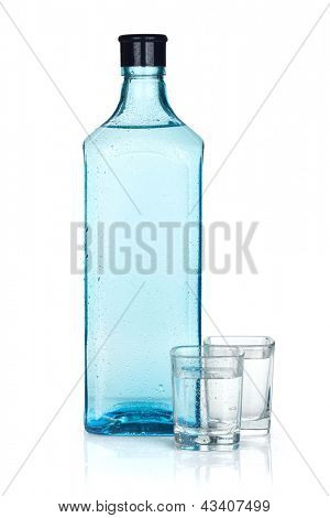 Gin bottle and two shots. Isolated on white background