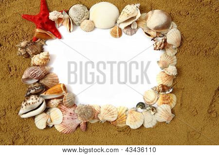 Sand Frame With The Shells