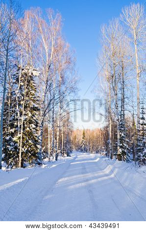 Snow-covered road leading through the winter forest