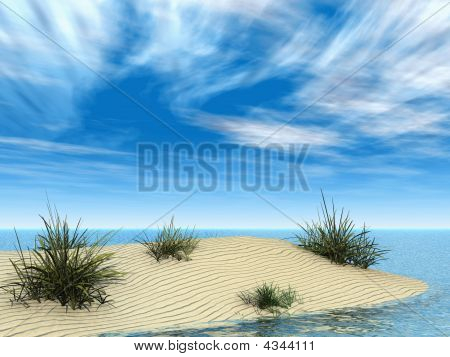 Small Sandbar With Grasses
