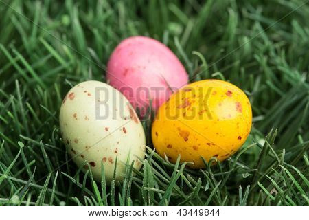 Three little easter eggs nestled in the grass