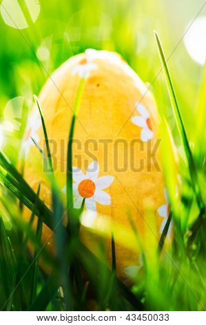 Easter egg nestled in the green grass in the sunshine