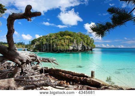 Beach on a paradise island