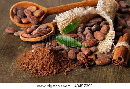 Cocoa beans in spoons, cocoa powder and spices on wooden background