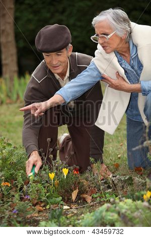 Elderly couple Gartenbau