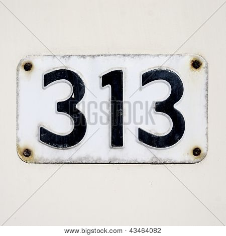 Nr. 313