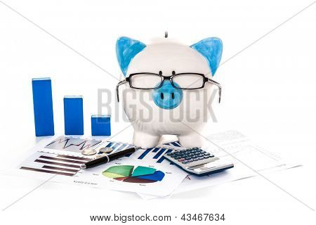 Piggy bank wearing glasses with accountancy paperwork calculator and blue graph model