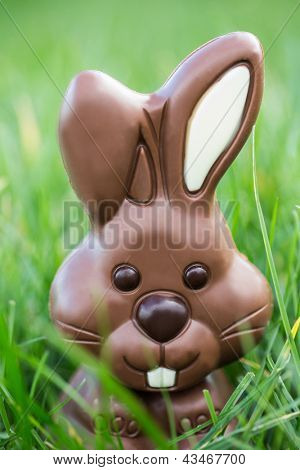 Cute chocolate bunny nestled in the grass