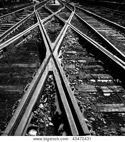 Crossed Railway In Outside