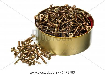 Screws In A Can