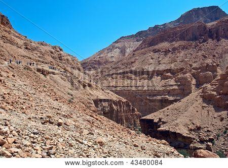Tourists In The Judean Desert.