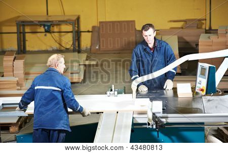 technician workers with circ saw machine at wood furniture manufacturing workshop production