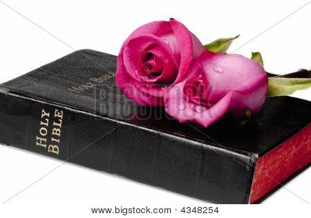Faith And Romance