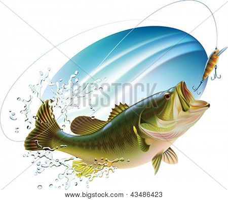 Largemouth bass is catching a bite and jumping in water spray. Layered vector illustration.