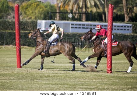 Polo At The Goal