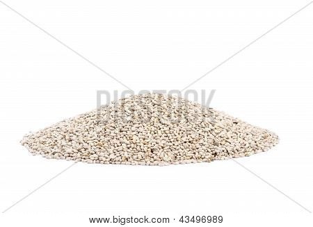Chia Seeds Isolated