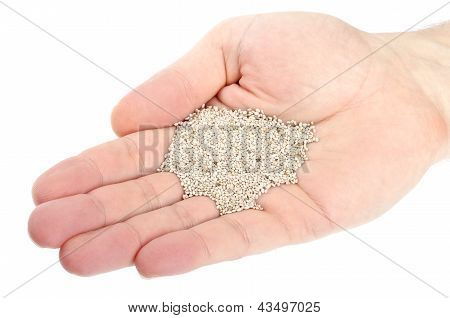 Handful of Chia Seeds