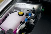 stock photo of internal combustion  - Coolant container in a car - JPG