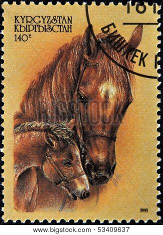 KYRGYZSTAN - CIRCA 1995: A stamp printed in Kyrgyzstan shows horse with filly circa 1995