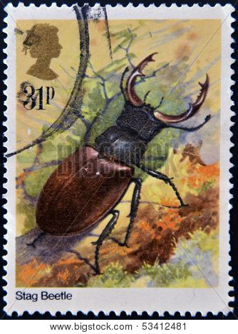 UNITED KINGDOM - CIRCA 2012: A stamp printed in Great Britain shows Lucanus cervus (stag beetle)