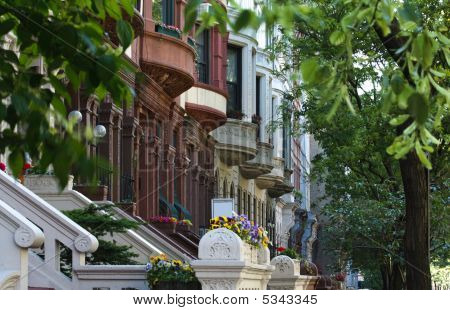 Zeile der brownstones