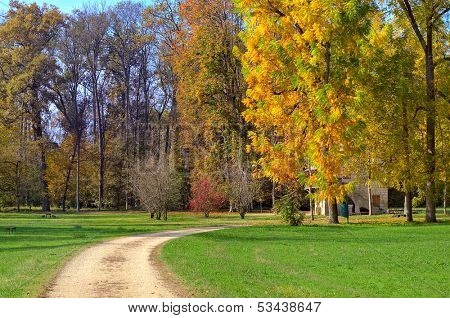 Unpaved footpath and trees with multicolored lush foliage on green lawns in autumn at Racconigi parc, Italy.