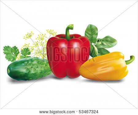 Vegetables and herbs composition. Vector eps10.
