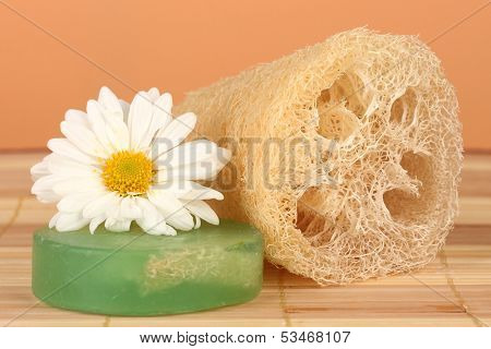 Loofah on color background