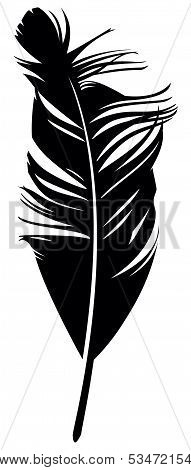 Feather. Vector illustration.