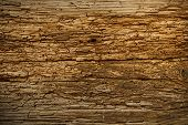 image of deforestation  - Old wood cracked texture for background - JPG