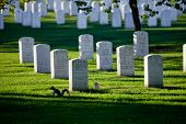 Washington Dc - Arlington National Cemetery
