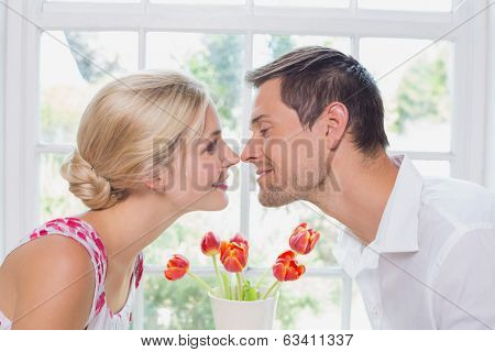Close-up side view of a romantic young couple rubbing noses at home