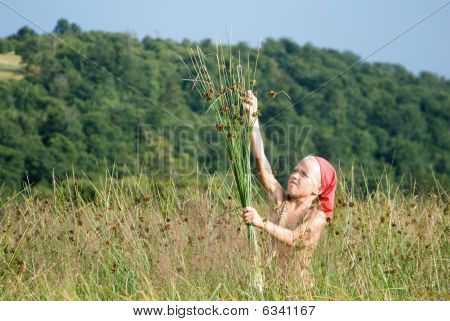 Girl Picking The Herbs
