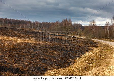 Burned earth after conflagration