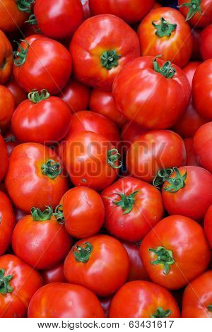 Pile of Tomatoes at the Farmers Market