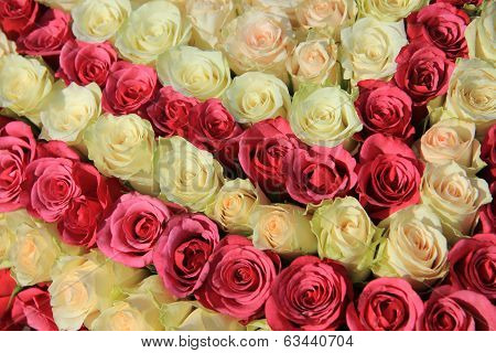 Pink Roses In Different Shades In Wedding Arrangement