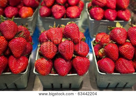 Organic Strawberries At Framer's Market
