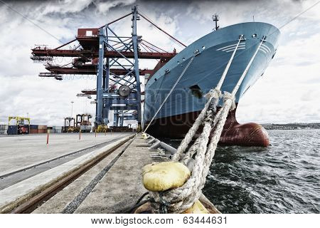 container ship mired in industrial port
