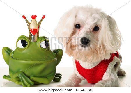 Príncipe Pup