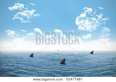 Digitally generated shark infested sea under blue sky