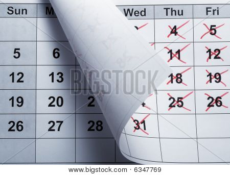 Calendar Closeup