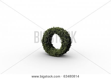 Lower case letter o made of leaves on white background