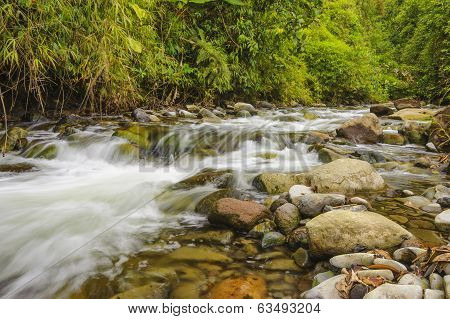 Rushing Mountain Stream