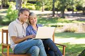 Smiling couple using laptop on bench in a park