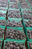 Boxes of Blueberries in green cartons at farmers market