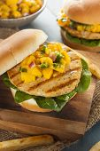 stock photo of mahi  - Mahi Fish Sandwich with Salsa and Lettuce