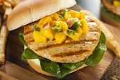 image of mahi  - Mahi Fish Sandwich with Salsa and Lettuce
