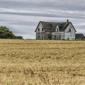 stock photo of collapse  - Old abandoned farmhouse collapsing into the earth - JPG