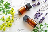 picture of science  - essential oils on science sheet with herbal flowers - JPG
